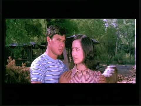 หนังไทยในอดีตแอคชั่นระห่ำ ถล่มดงนักเลง 3 ตรงปก เต็มเรื่อง
